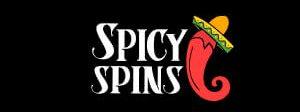 spicyspins logo